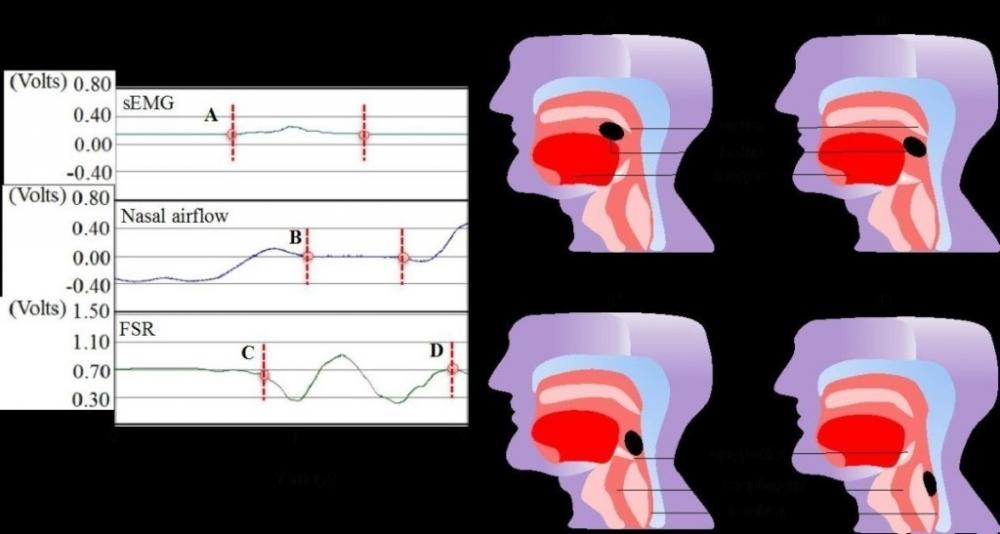 非侵入式呼吸與吞嚥功能協調性之檢測