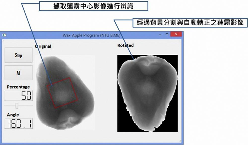 水果殘留病蟲害一目瞭然 市面上首創商品化水果X光